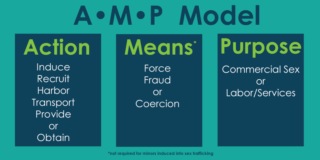 AMP Model | The Dragonfly Home | Human Trafficking Victim Services